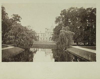Photograph: Postcard
