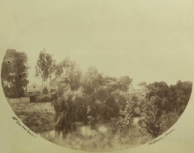 Photograph: View from Hagley Park across the Avon