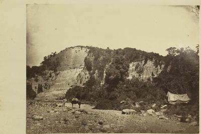 Photograph: Orari Gorge