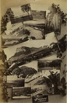Photograph: Chatham Islands Postcards