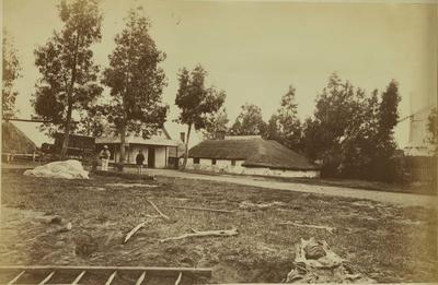Photograph: Leithfield