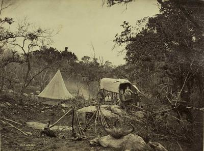 Photograph: Hunting Camp, South Africa