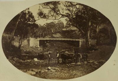 Photograph: Tasmania