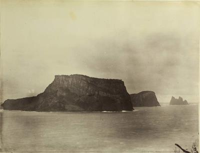 Photograph: Chatham Islands