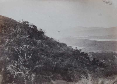 Photograph: Governor's Bay