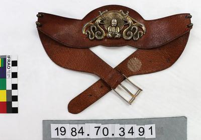 Belt: Hogskin