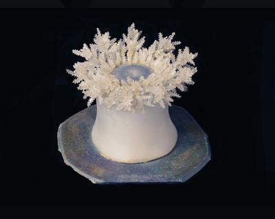 Glass Model Invertebrate: Thalassianthus aster