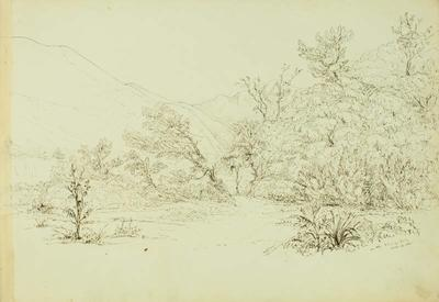 Sketch: On the Rangitata,  14 October 1861