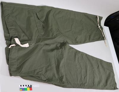 Trousers: Green