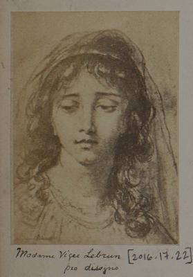 Photograph: Madonna Viger Lebrun, Illustration