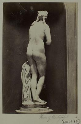 Photograph: Venus of the Capitol, Rear View of Sculpture