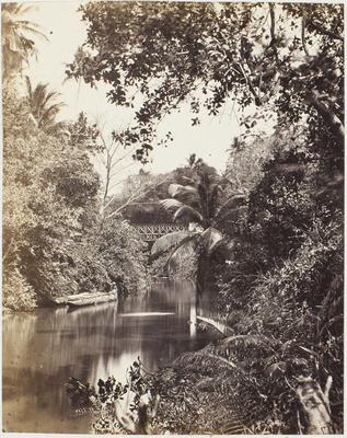Photograph: Bridge Over Waterway, Ceylon