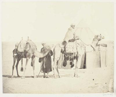 Photograph: Two Men with Camels