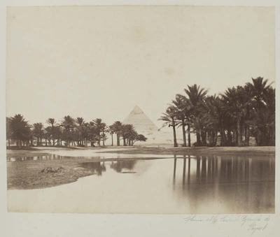 Photograph: Pyramid Through Trees