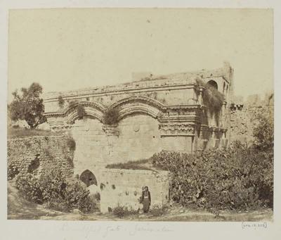 Photograph: Ancient Gate with Wild Cactus, Jerusalem