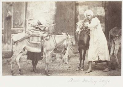 Photograph: Boys with Donkeys, Cairo