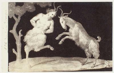 Photograph: Faun Versus Goat Illustration, Pompeii Frieze