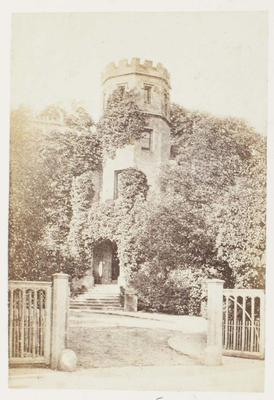 Photograph: Tower Covered in Vegetation, Rugby