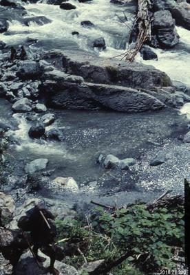 35mm Slide: Bridge Across Kembeh River
