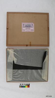 Plate: Ilford Soft Gradation Panchromatic