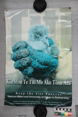 Poster: Titi