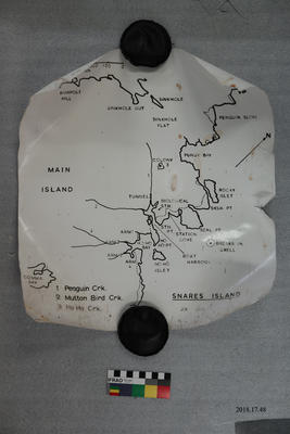 Poster: Map of Snares Island