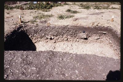 35mm Slide: East Side, Fyffe Site Archaeological Excavation (S49/46)