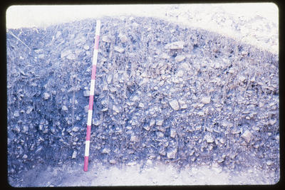 35mm Slide: Section of Wall, Fyffe Site Archaeological Excavation (S49/46)