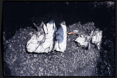 35mm Slide: Limestone Slabs, Fyffe Site Archaeological Excavation (S49/46)
