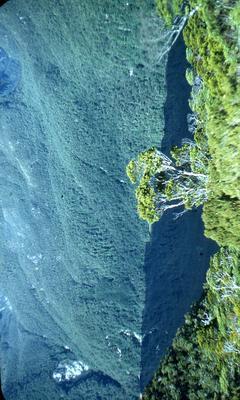 Slide: Bush Clad Valley