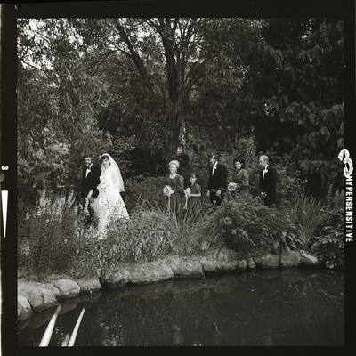 Negative: Hodson-Shepherd wedding
