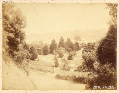 Photograph: Botanic Gardens, Dunedin