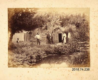 Photograph: Lofley's Baths near Taupo