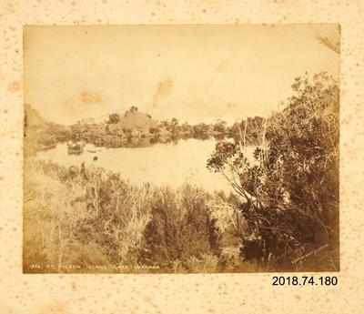 Photograph: On Pigeon Island, Lake Wanaka