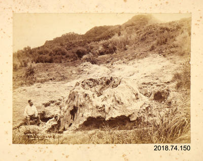 Photograph: Crow's Nest Near Lofley's, Taupo