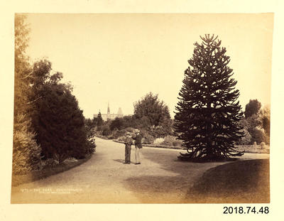 Photograph: The Park - Christchurch