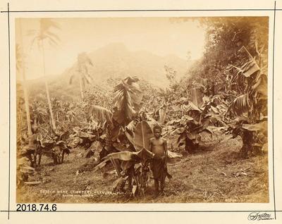Photograph: Near Cemetery - Levuka - Fiji