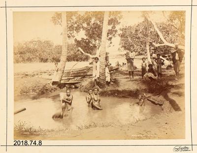 Photograph: Fijian Girls - Bathing
