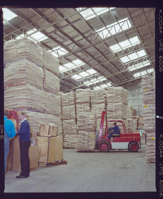 Negative: Pallets In A Warehouse