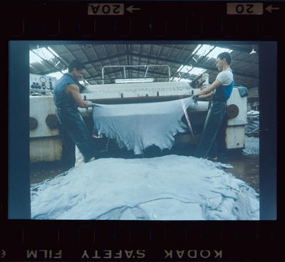 Negative: Napier Factory Interior Two Men