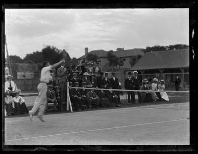 Glass Plate Negative: Wilding Tennis at Lancaster Park