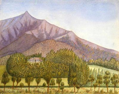Painting: A J Dennistoun Homestead, Peel Forest