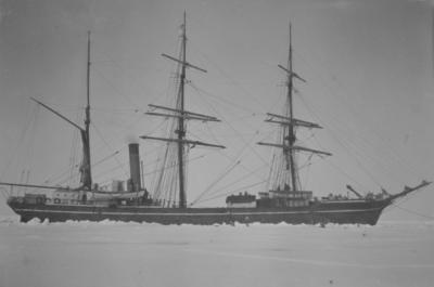 Photograph: Terra Nova