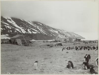 Photograph: Huts at Cape Adare