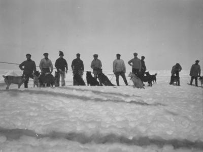 Photograph: Ten Men with Dogs