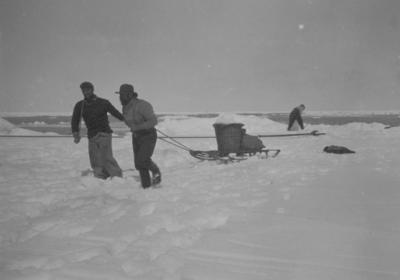 Photograph: Three Men Collecting Ice