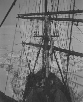Photograph: Terra Nova's Foremast