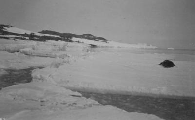 Photograph: Cape Evans and Sea Ice