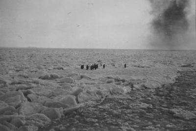 Photograph: Emperor Penguins on Pancake Ice