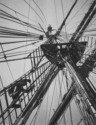 Photograph: Crows' Nest